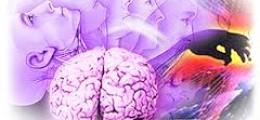 Профессиональные заболевания (видеотека)